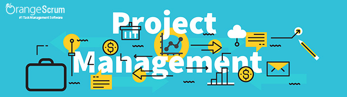 Project Management Software: Does One Size Fit All?