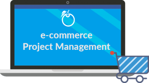 You're Ecommerce Company Project Management Guide