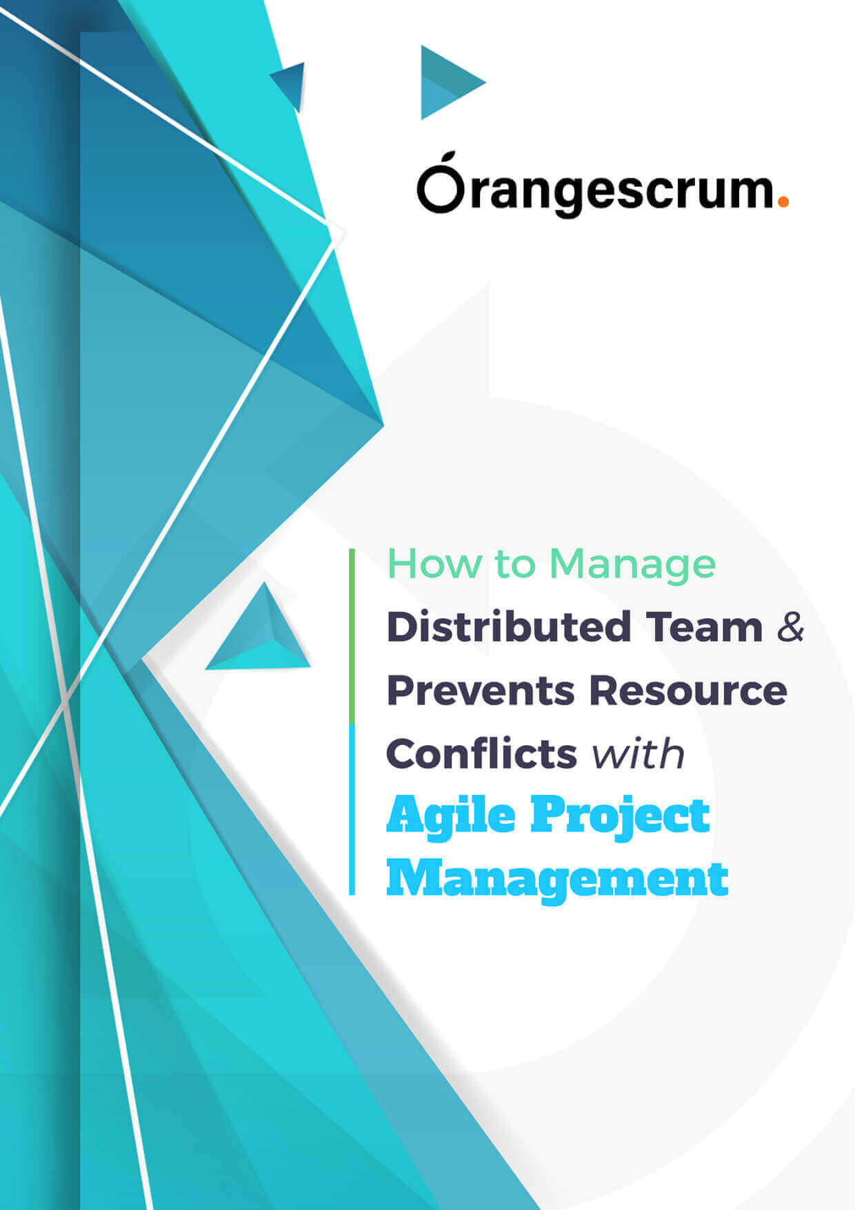 How to Manage Distributed Team & Prevents Resource Conflicts with Agile Project Management