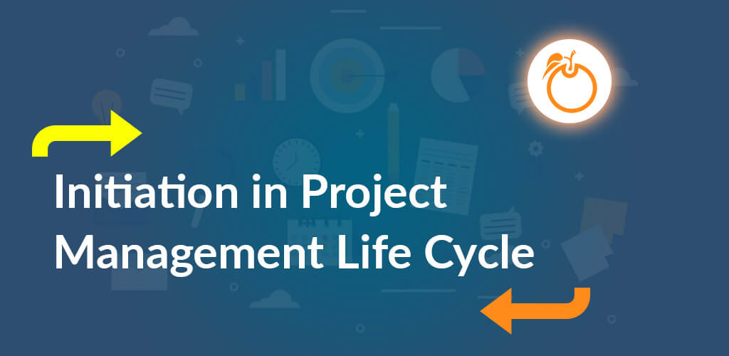 What is the Project Management Life Cycle
