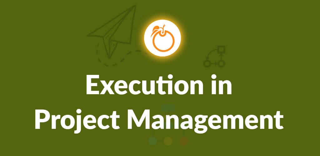 Execution in Project Management